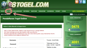 no togel main voli